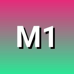M1shu91