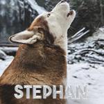 Stephan17