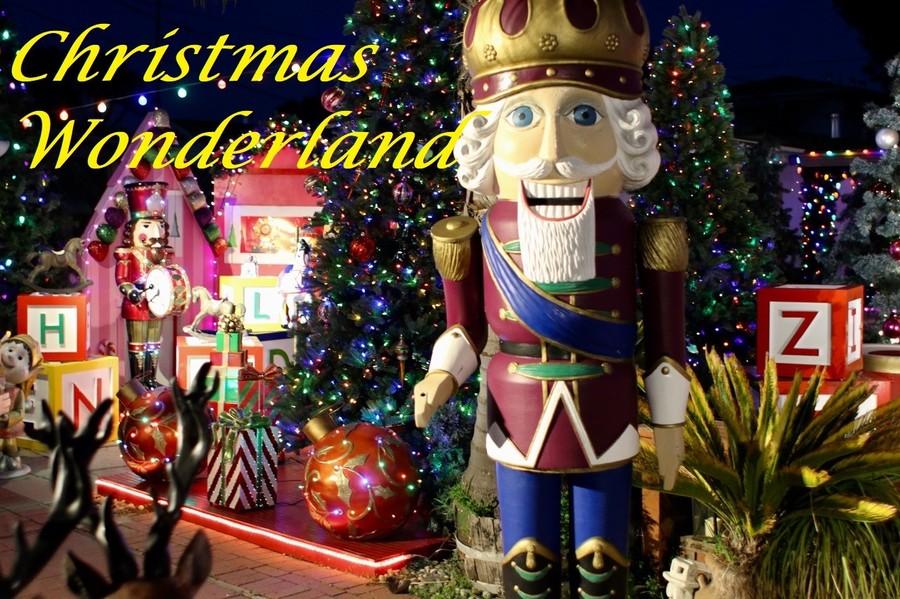 1615439101_christmaswonderland.thumb.jpeg.5fbef247b0e666f53eeb84d5b64c6a58.jpeg