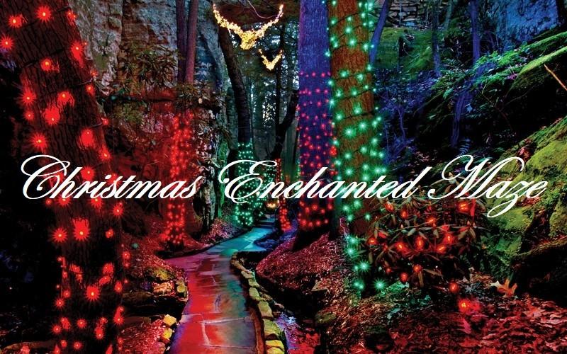 361833016_ChristmasEnchantedMaze.jpg.303d60e41c4fa3d801c1abe0643abb66.jpg